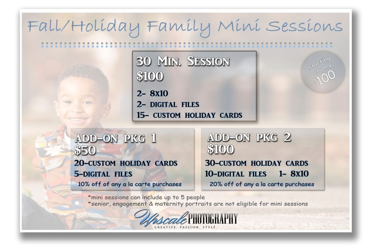 mini-session-pricing